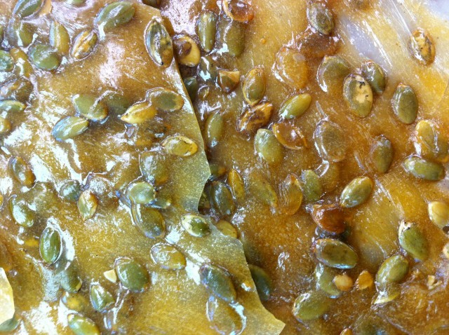 Original Murdick's Fudge Pumpkin Seed Brittle