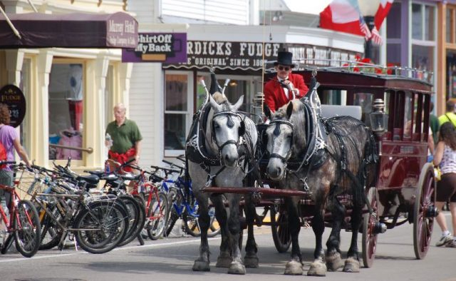 Original Murdick's Fudge Horses of Mackinac Island