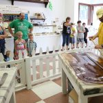 Our Mackinaw City And St. Ignace Fudge Shops Gear Up For Busy Labor Day Weekend And Mackinac Bridge Walk