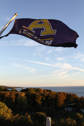 Original Murdick's Fudge Grand Hotel Albion College Flag
