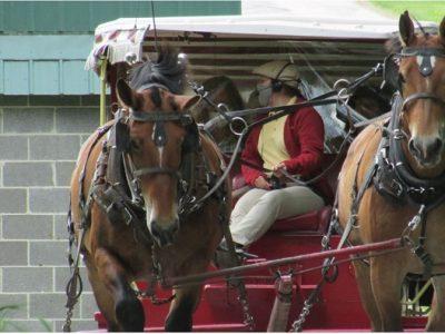 Mackinac Island Carriage Rides
